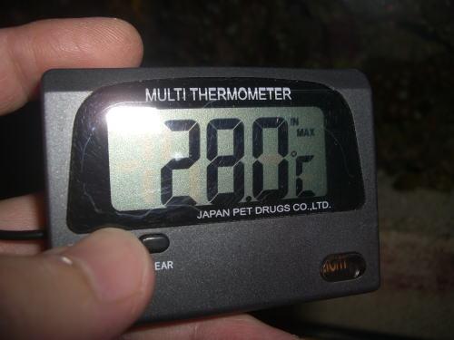 179.jpg